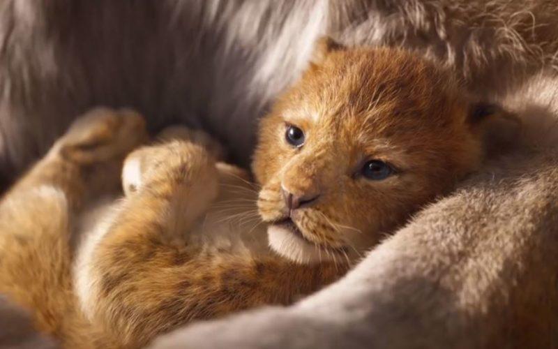 король лев ремейк 2019