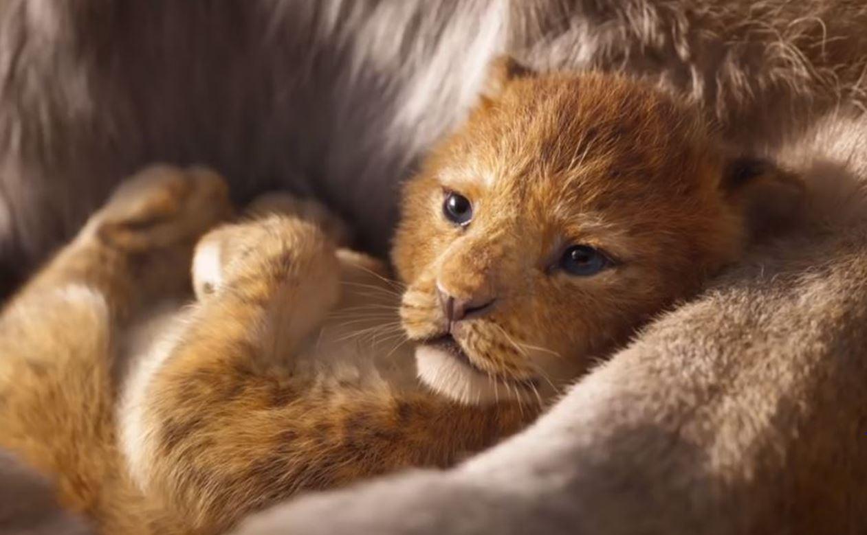 Вышел первый трейлер ремейка легендарного мультфильма «Король Лев» от Disney (ВИДЕО)