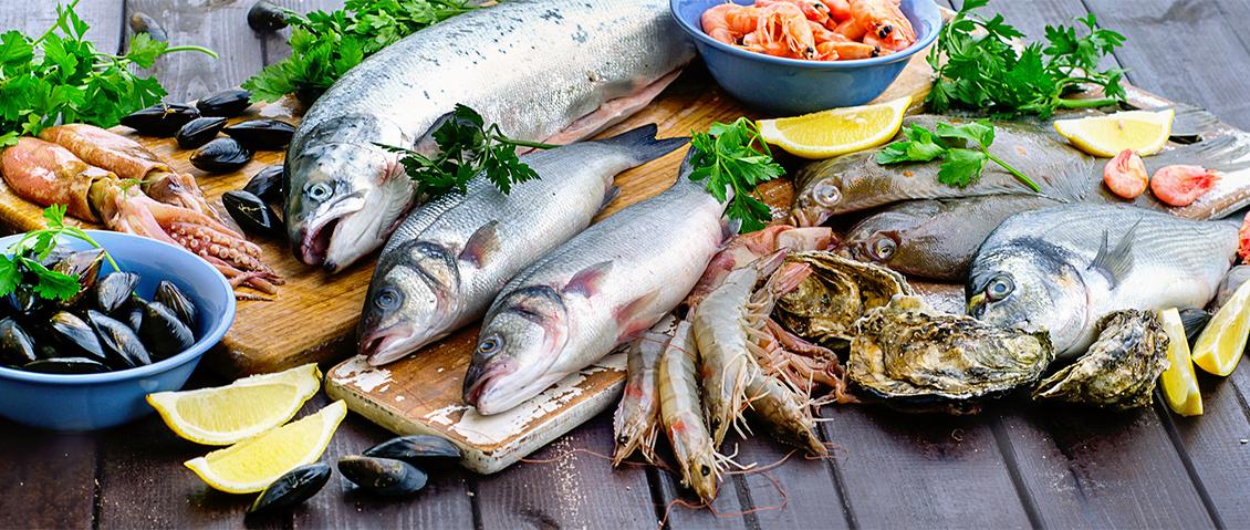 Много видов рыбы