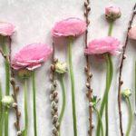 Гороскоп на 10 февраля: не бойтесь идти за велением сердца