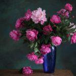 Как продлить жизнь срезанных цветов: советы