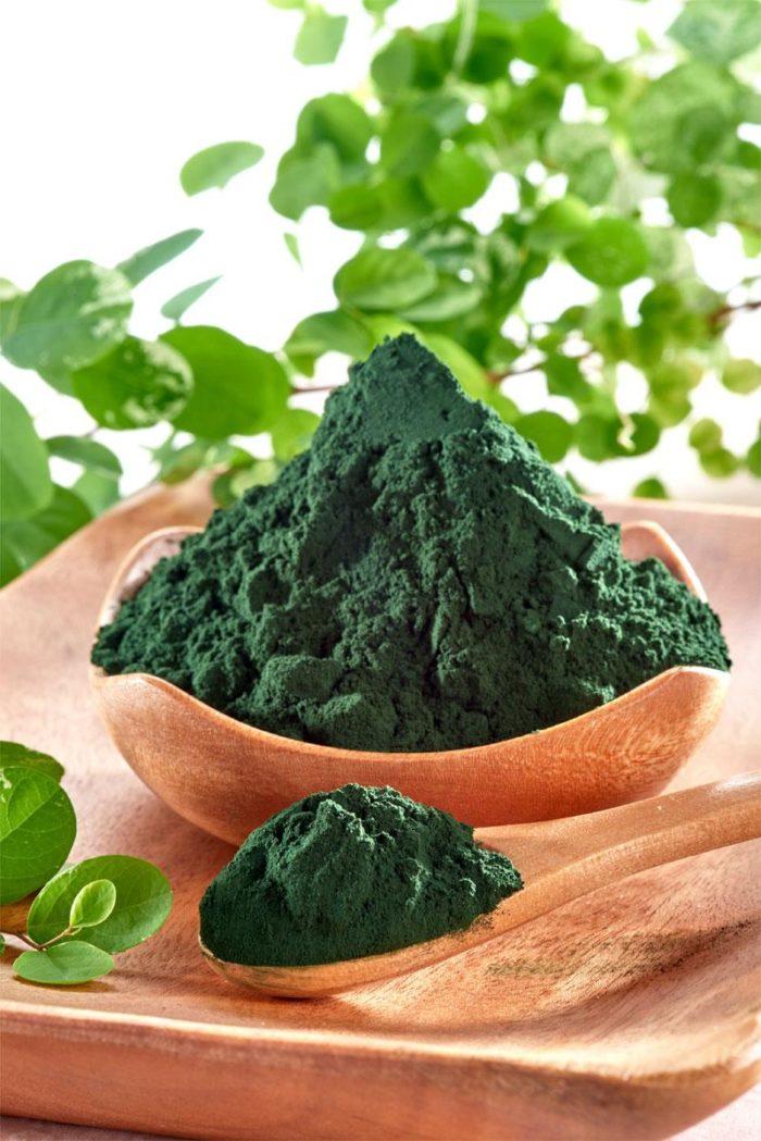 Спирулина (водоросли)