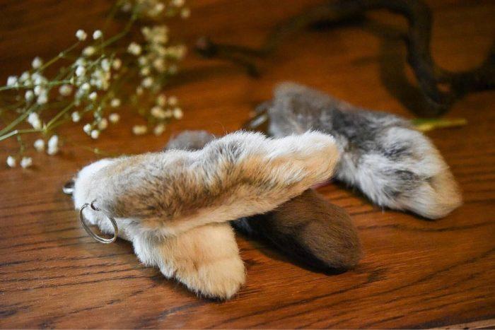 счастливая кроличья лапка суеверия