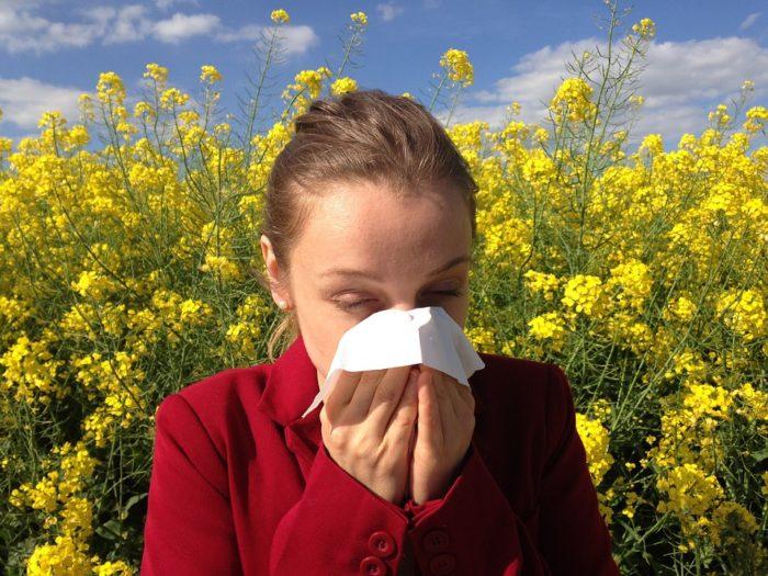 сезонная аллергия как избавиться