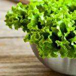 Виды зеленого салата, которые должны быть в рационе каждого