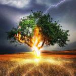 Как вести себя во время грозы: правила выживания