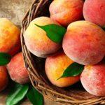 Персики: польза и вред любимого летнего фрукта