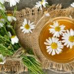 Ромашковый чай: польза, применение и как готовить