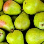 Груши: польза и вред вред для организма
