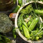 Соления на зиму: как заквасить огурцы и помидоры