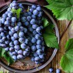 Виноград: польза и кому нельзя есть