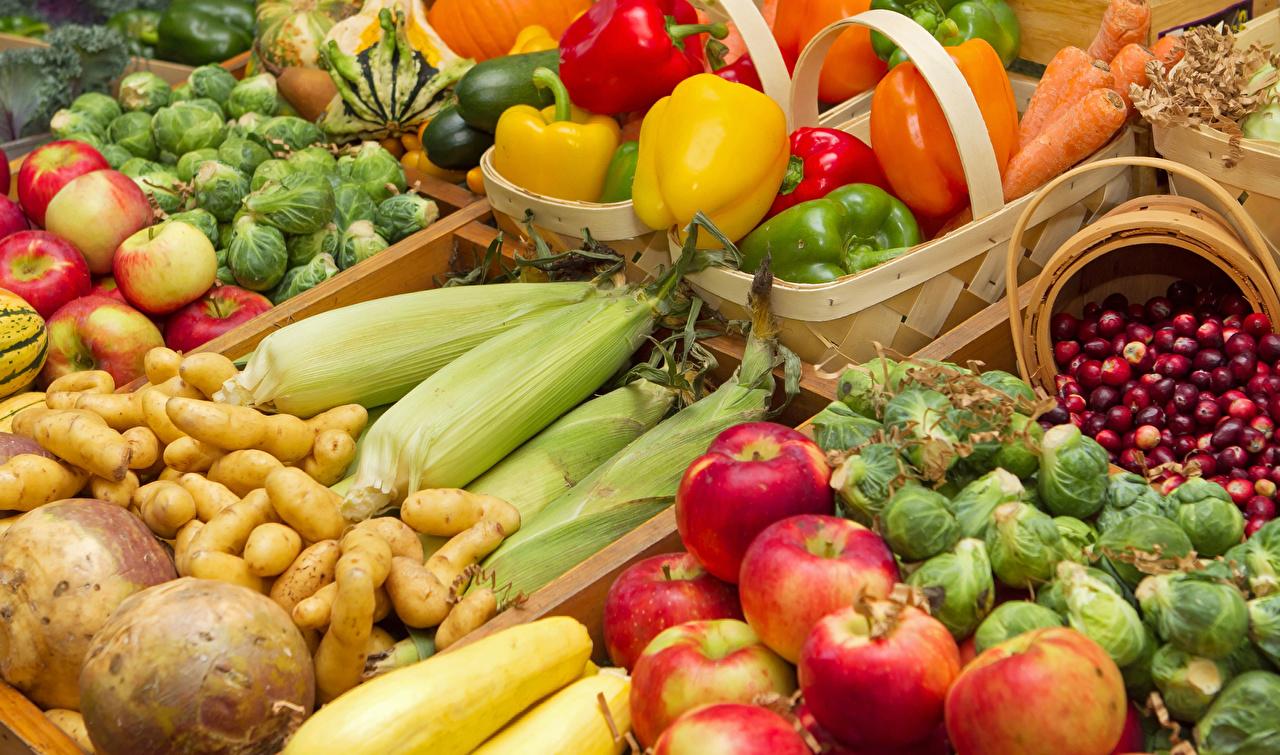 Какие овощи можно сеять под зиму