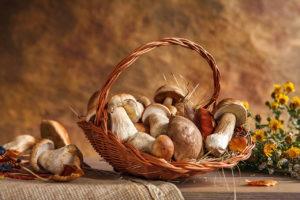 отравления грибами что делать