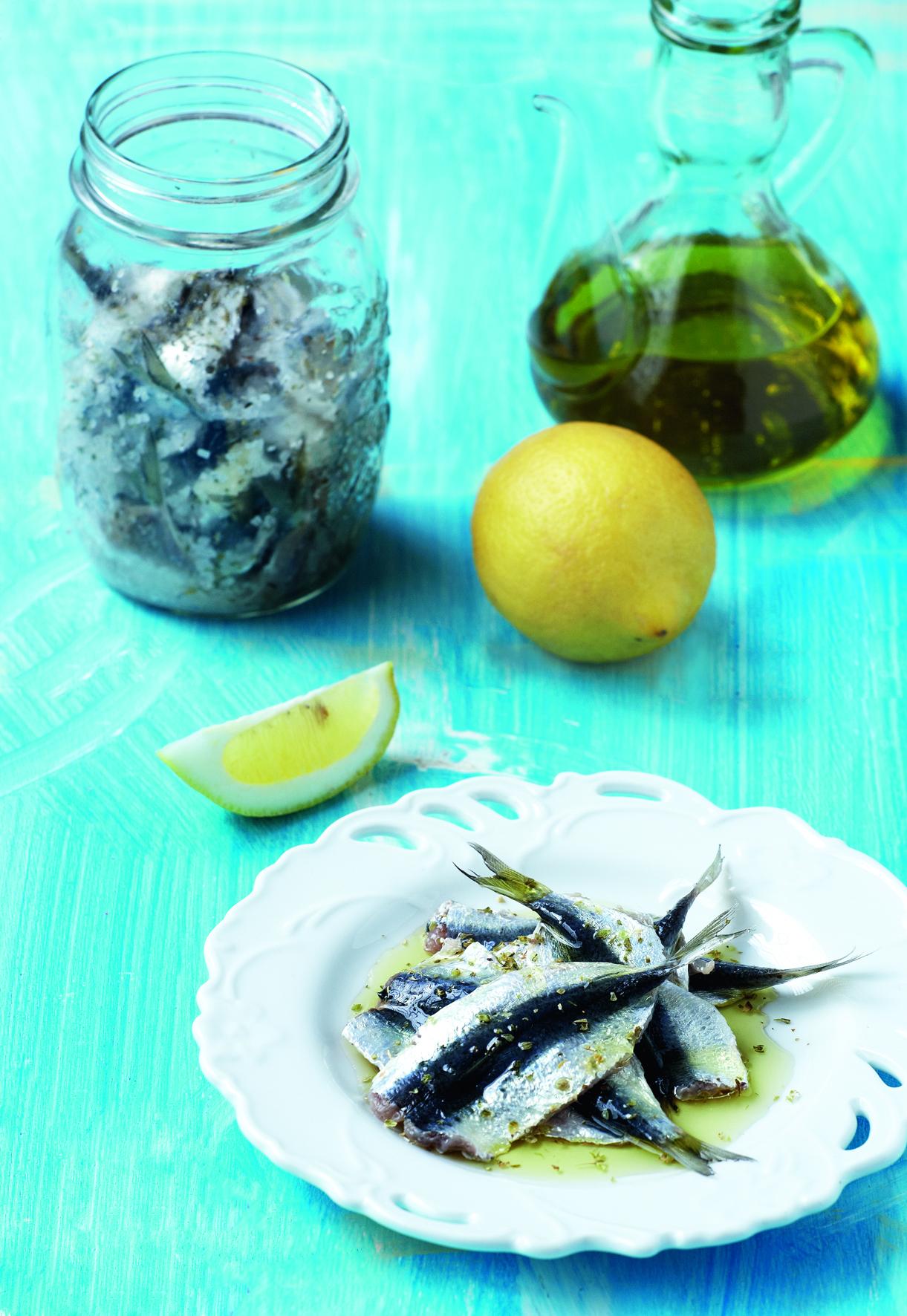 виды рыбы сардины