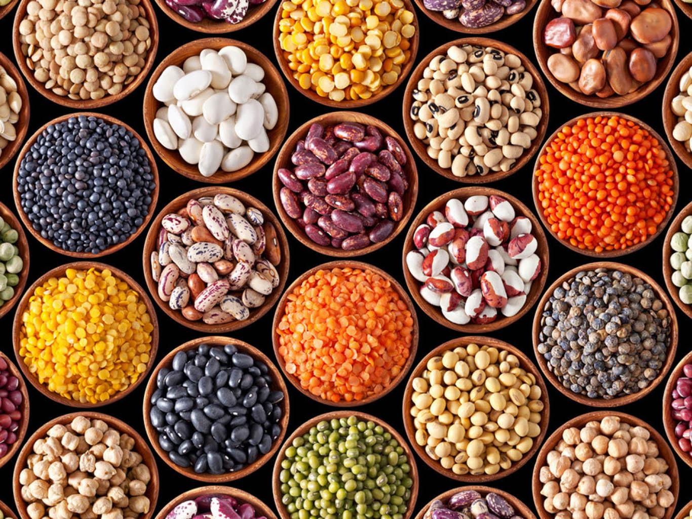 популярных виды бобовых фасоль