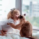 Хочется кошку, но аллергия? Названы безопасные породы для аллергиков