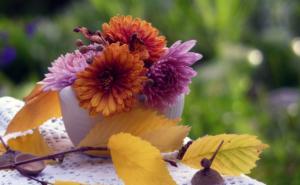 дмитриев день 2019 дата и традиции праздника