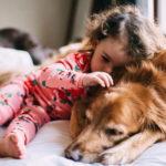 Стать собаководом: 10 наиболее дружелюбных видов собак