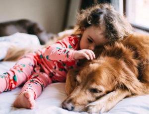 собаки которые любят детей
