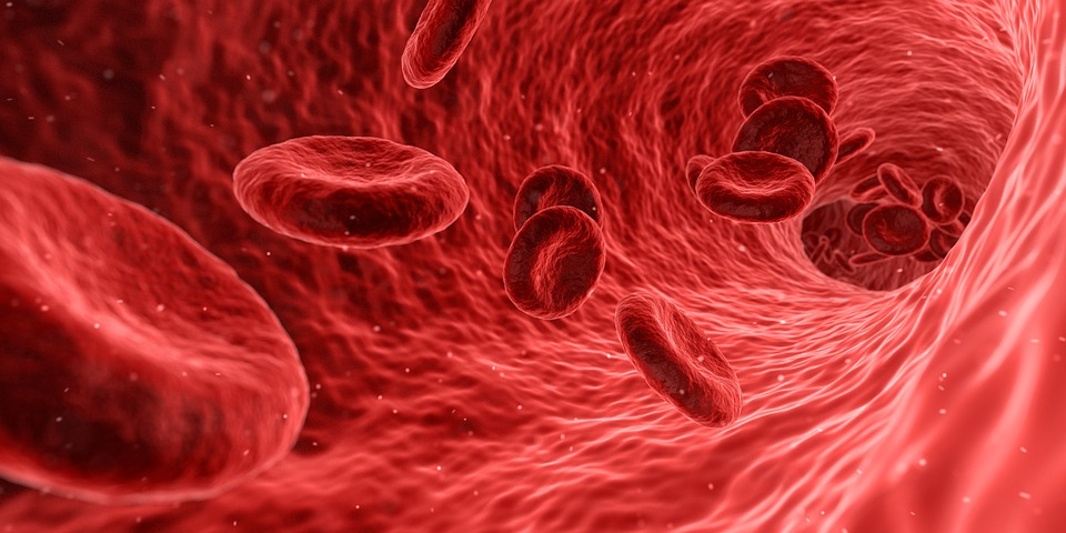 атеросклероз профилактика