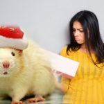 Что нельзя дарить на Новый год: антирейтинг подарков