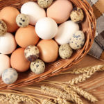 Ученые назвали главный вред белковых диет