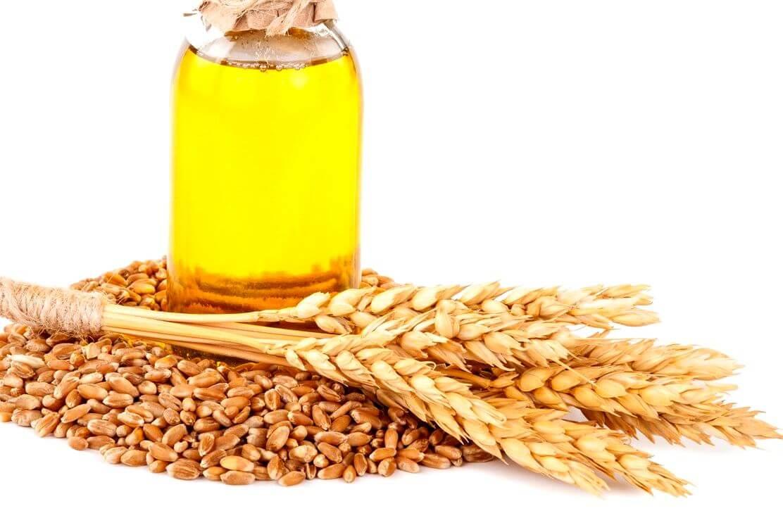 масло зародышей пшеницы польза