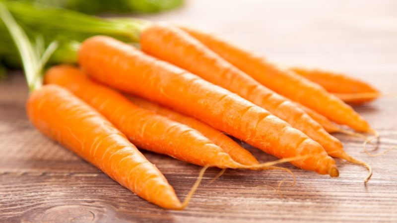 Морковь: польза и вред овоща