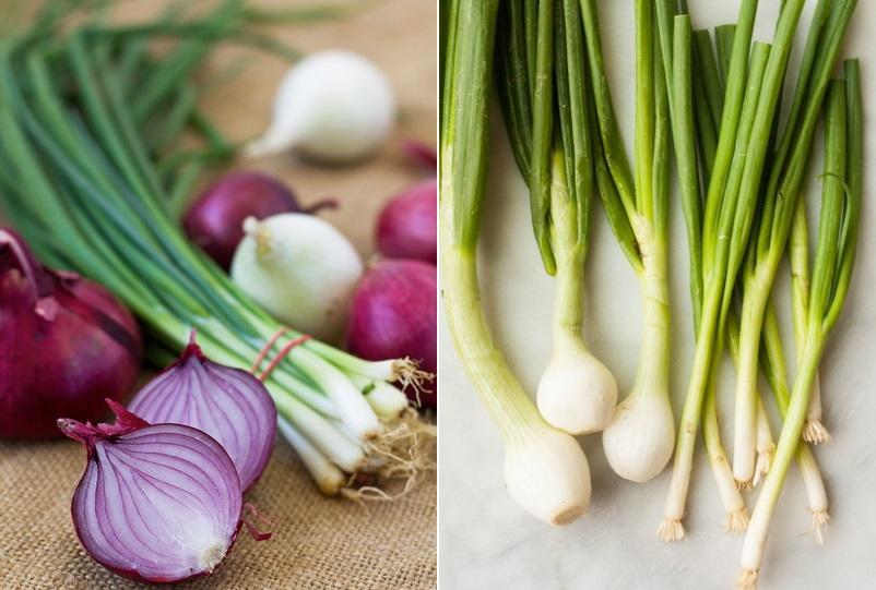 Как вырастить круглый и крепкий лук: советы от опытных дачников
