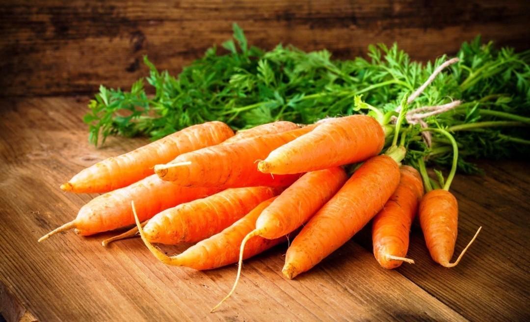морковь свойства