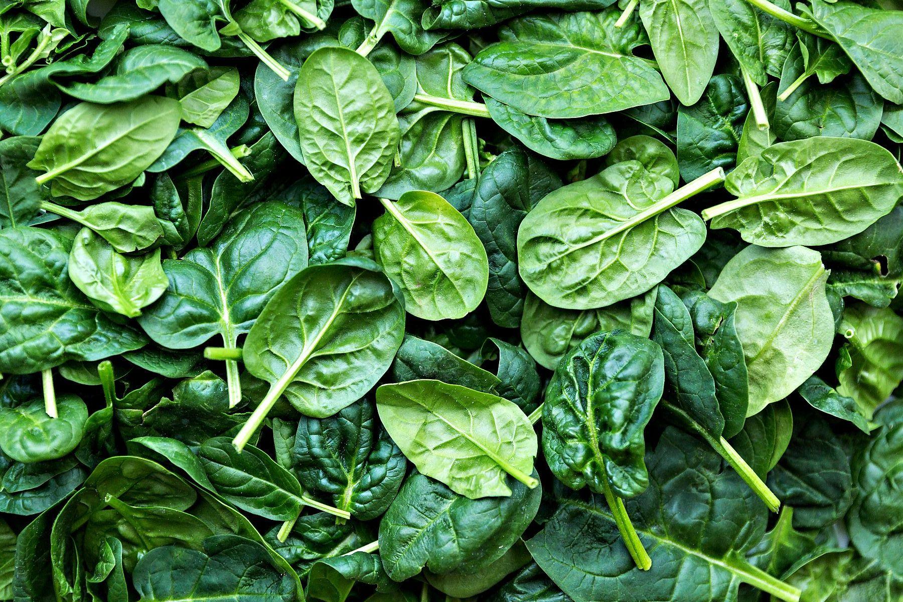 польза и вред зелени