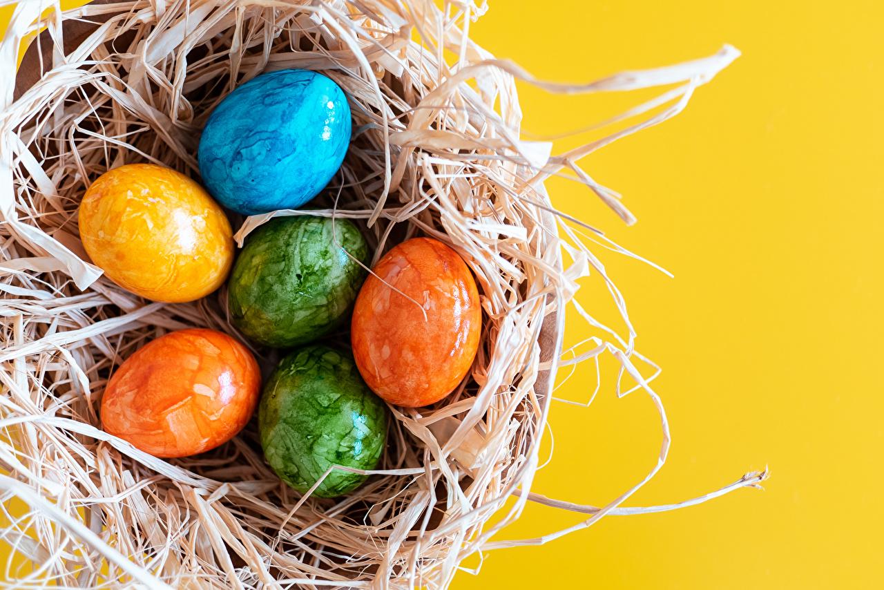 что приготовить из яиц