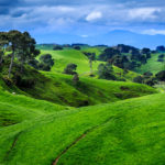 Новая Зеландия выходит из карантина: ТОП-5 фактов о стране-мечте каждого путешественника