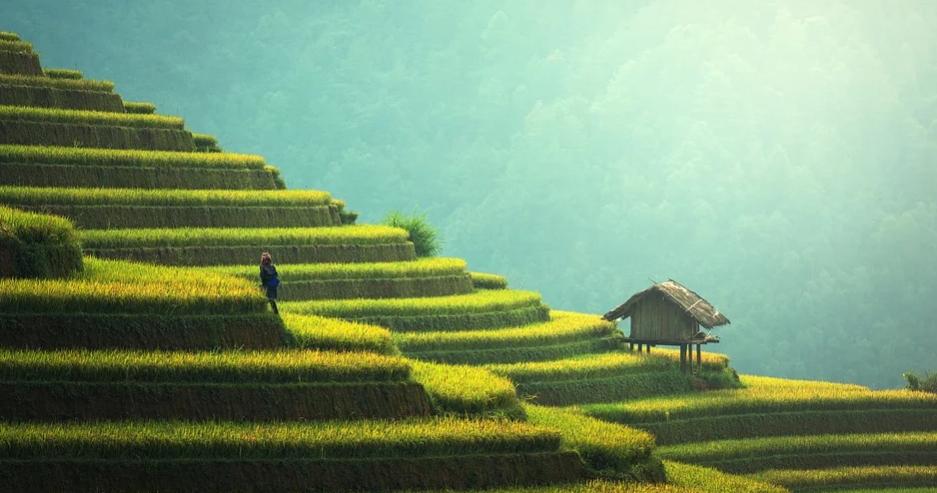 индонезия бали туры