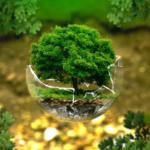 Как стать эко-френдли и начать сортировать дома мусор: советы