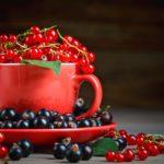 Белая, красная и черная смородина: какая ягода самая полезная?