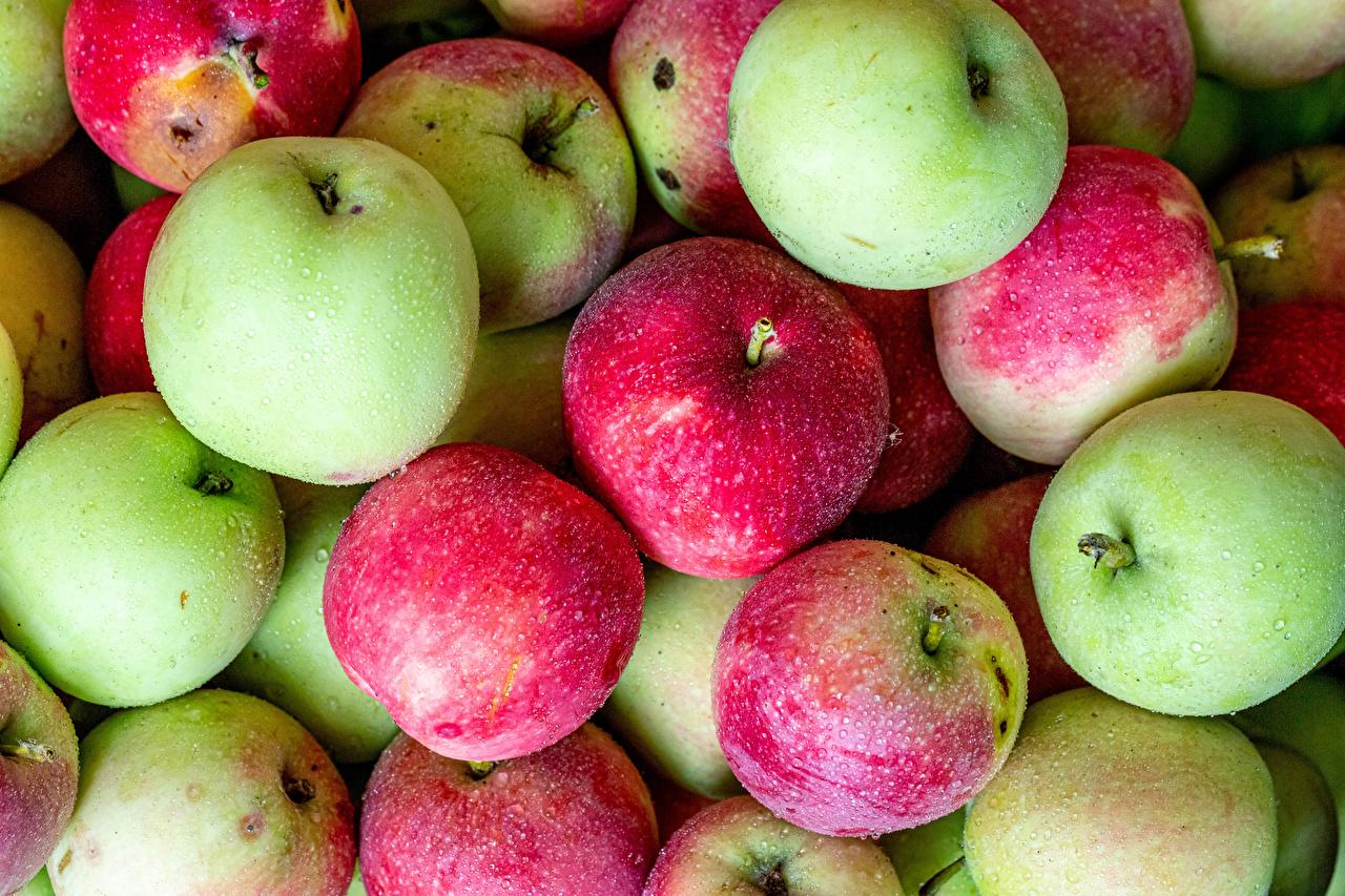 открытка с яблочным спасом