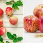 Яблочный Спас: душевные поздравления и открытки с праздником