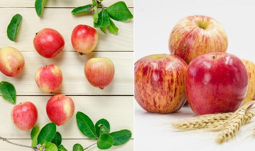 открытки с яблочным спасом бесплатно