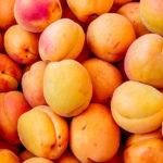 Важные причины, почему абрикосы должны быть в вашем летнем меню
