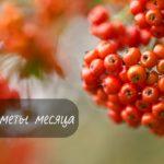 Присматриваемся в к природе: народные приметы сентября
