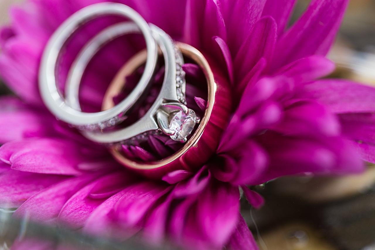 трогательное поздравление со свадьбой