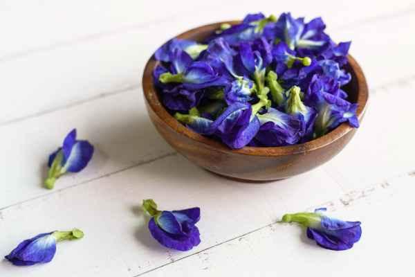 цветы в чае синего цвета