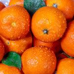 Не выбрасывайте: что можно сделать из мандариновых корок?