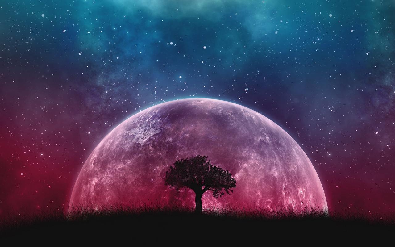 Ретроградный Меркурий в 2021 году: что это и когда ожидать неблагоприятный период