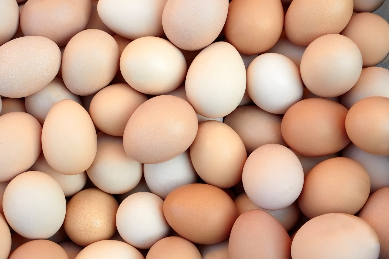 Специалисты развенчали мифы о вреде куриных яиц