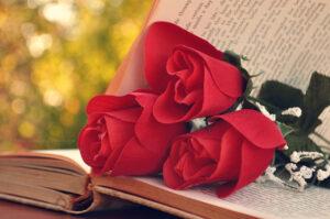 читать книгу про девушку