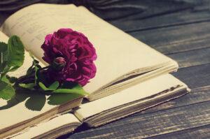 идеи книг для девушек