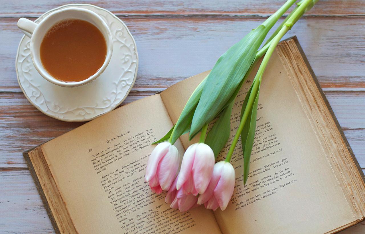 книги которые надо прочитать девушкам