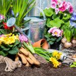 Календарь садовода и огородника на апрель 2021 года